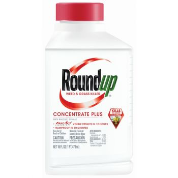 Roundup® Weed & Grass Killer Concentrate Plus, 16 Oz