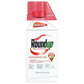 Roundup® Weed & Grass Killer Concentrate Plus, 36.8 Oz