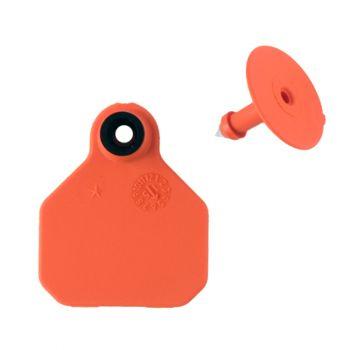 Y-Tex All American 1-Star Mini Blank Ear Tags, Orange, 2 Pc.