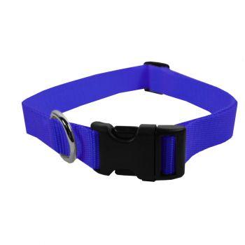 Adjustable Nylon Collar, Large, Blue