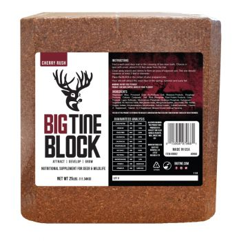 Big Tine Block, 25 Lb.